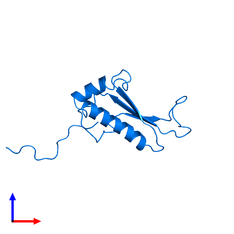 <div class='caption-body'>PDB entry 1j26 contains 1 copy of Peptidyl-tRNA hydrolase ICT1, mitochondrial in assembly 1. This protein is highlighted and viewed from the front.</div>
