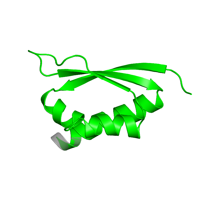 <div class='caption-body'>1 copy of CATH domain <a target='_blank' href='http://www.cathdb.info/cathnode/3.30.1370.10'>3.30.1370.10</a> (Ribosomal Protein S8; Chain: A, domain 1) in Heterogeneous nuclear ribonucleoprotein K in PDB entry 1j5k.</div>