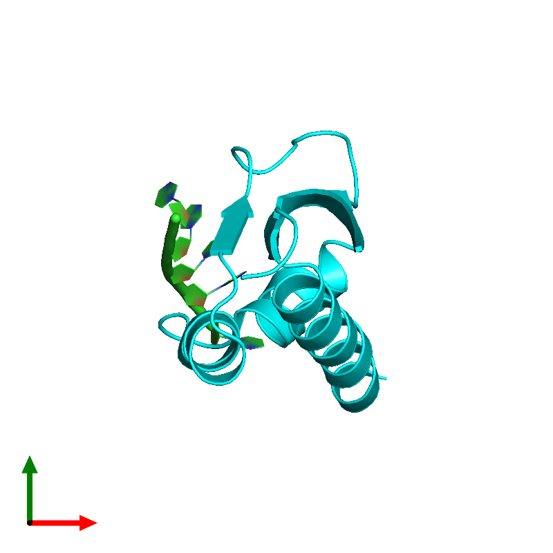 <div class='caption-body'><ul class ='image_legend_ul'>The deposited structure of PDB entry 1j5k coloured by chain and viewed from the top. The entry contains: <li class ='image_legend_li'>1 copy of 5'-D(*AP*TP*AP*T*TP*CP*CP*CP*TP*C)-3'</li><li class ='image_legend_li'>1 copy of Heterogeneous nuclear ribonucleoprotein K</li><li class ='image_legend_li'>There are no non-polymeric molecules</li></ul></li></ul></li></div>