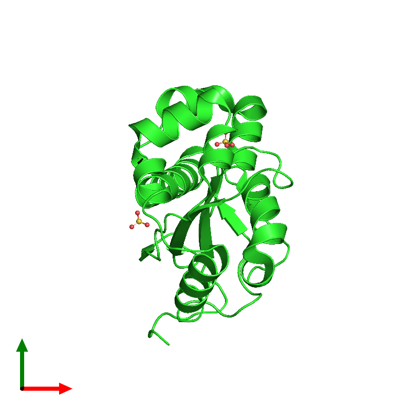 <div class='caption-body'><ul class ='image_legend_ul'>The deposited structure of PDB entry 1j9a coloured by chain and viewed from the top. The entry contains: <li class ='image_legend_li'>1 copy of Oligoribonuclease</li><li class ='image_legend_li'>There is 1 non-polymeric molecule<ul class ='image_legend_ul'><li class ='image_legend_li'>2 copies of SULFATE ION</li></ul></li></div>