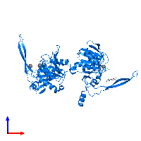 PDB 1j9l contains 2 copies of 5'-nucleotidase SurE in assembly 1. This protein is highlighted and viewed from the front.