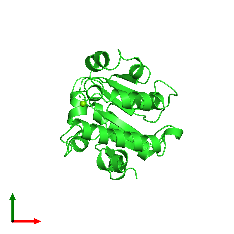 <div class='caption-body'><ul class ='image_legend_ul'> Monomeric assembly 1 of PDB entry 1jbk coloured by chain and viewed from the top. This assembly contains:<li class ='image_legend_li'>One copy of CLPB PROTEIN</li><li class ='image_legend_li'>One copy of MAGNESIUM ION</li></ul></div>