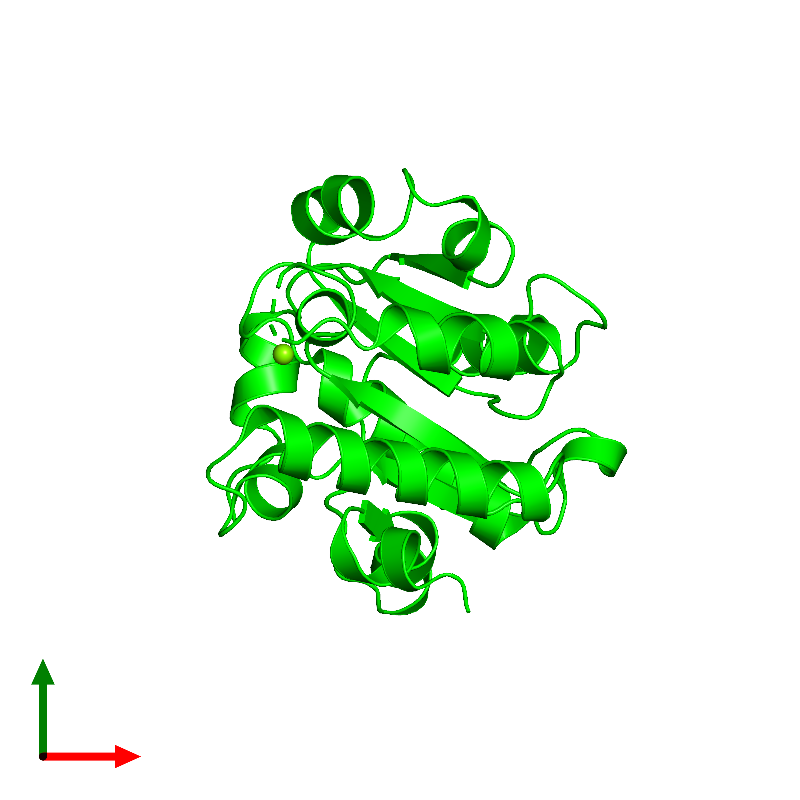 <div class='caption-body'><ul class ='image_legend_ul'> Monomeric assembly 1 of PDB entry 1jbk coloured by chemically distinct molecules and viewed from the top. This assembly contains:<li class ='image_legend_li'>One copy of CLPB PROTEIN</li><li class ='image_legend_li'>One copy of MAGNESIUM ION</li></ul></div>