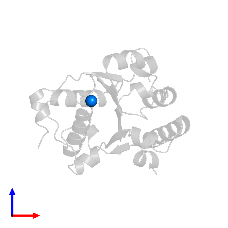 <div class='caption-body'>PDB entry 1jbk contains 1 copy of MAGNESIUM ION in assembly 1. This small molecule is highlighted and viewed from the front.</div>