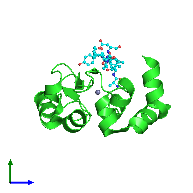 <div class='caption-body'><ul class ='image_legend_ul'>The deposited structure of PDB entry 1jd5 coloured by chain and viewed from the side. The entry contains: <li class ='image_legend_li'>1 copy of APOPTOSIS 1 INHIBITOR</li><li class ='image_legend_li'>1 copy of cell death protein GRIM</li><li class ='image_legend_li'>There is 1 non-polymeric molecule<ul class ='image_legend_ul'><li class ='image_legend_li'>1 copy of ZINC ION</li></ul></li></div>