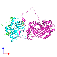 PDB 1jmo coloured by chain and viewed from the front.