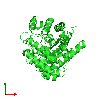 PDB 1jpi coloured by chain and viewed from the top.