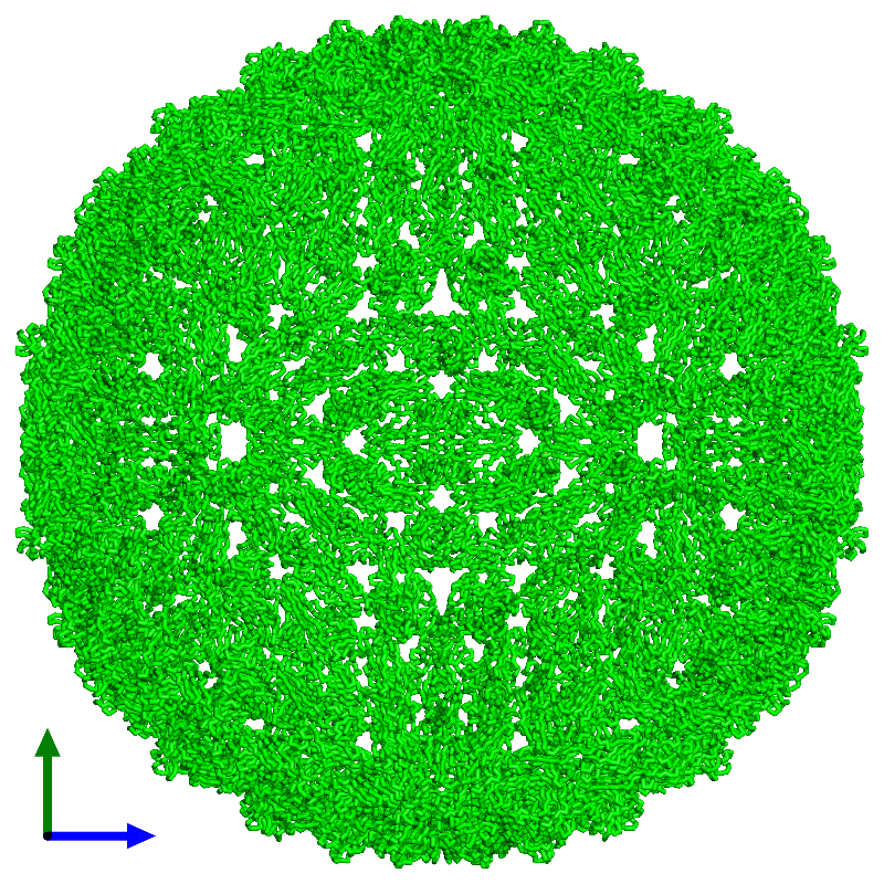 <div class='caption-body'><ul class ='image_legend_ul'> 180-meric assembly 1 of PDB entry 1k4r coloured by chemically distinct molecules and viewed from the side. This assembly contains:<li class ='image_legend_li'>180 copies of Core protein</li></ul></div>