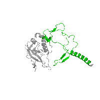 1 copy of CATH domain 4.10.540.10 (Photosynthetic Reaction Center; Chain H, domain 1) in Reaction center protein H chain in PDB 1k6n.