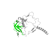 1 copy of Pfam domain PF05239 (PRC-barrel domain) in Reaction center protein H chain in PDB 1k6n.