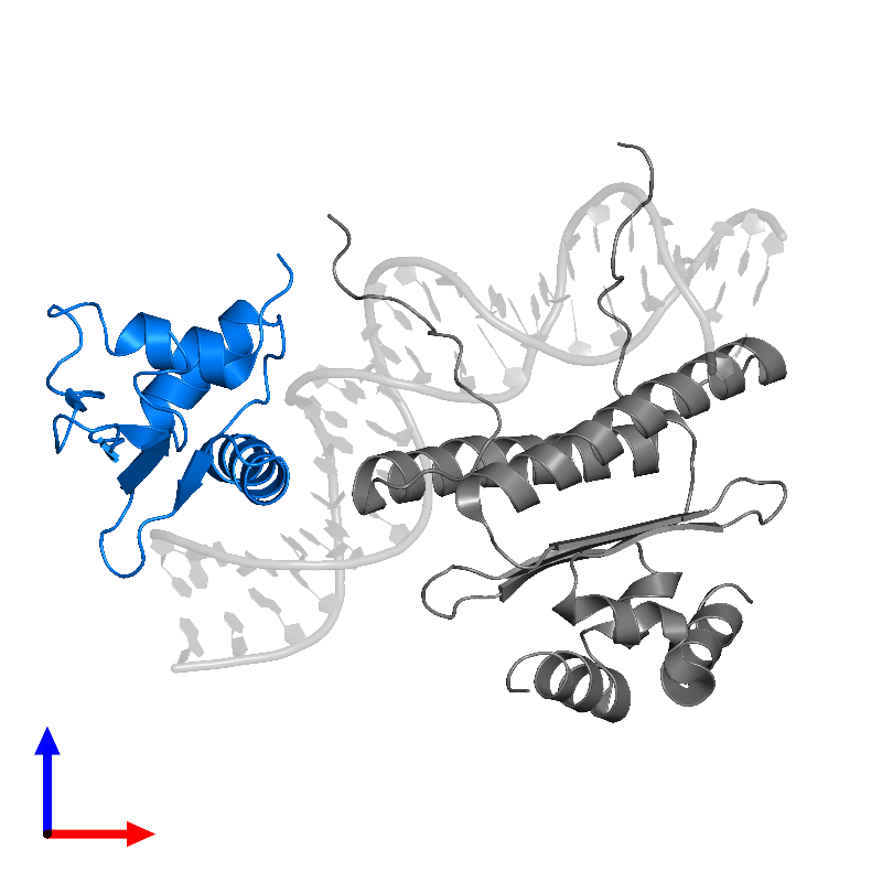 <div class='caption-body'>PDB entry 1k6o contains 1 copy of ETS domain-containing protein Elk-4 in assembly 1. This protein is highlighted and viewed from the front.</div>