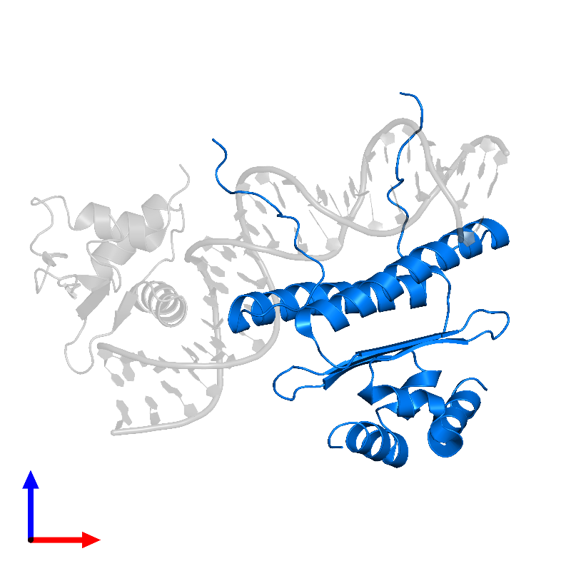 <div class='caption-body'>PDB entry 1k6o contains 2 copies of Serum response factor in assembly 1. This protein is highlighted and viewed from the front.</div>