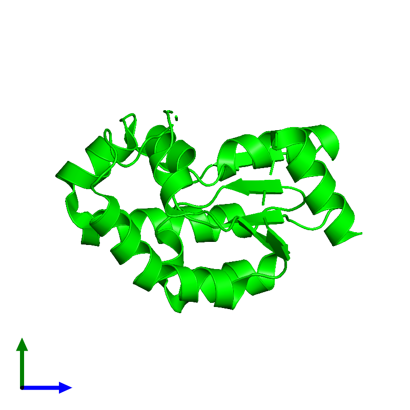 <div class='caption-body'><ul class ='image_legend_ul'> Monomeric assembly 1 of PDB entry 1kag coloured by chemically distinct molecules and viewed from the side. This assembly contains:<li class ='image_legend_li'>One copy of Shikimate kinase 1</li></ul></div>