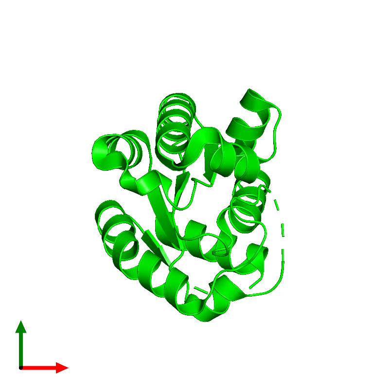 <div class='caption-body'><ul class ='image_legend_ul'> Monomeric assembly 1 of PDB entry 1kag coloured by chemically distinct molecules and viewed from the top. This assembly contains:<li class ='image_legend_li'>One copy of Shikimate kinase 1</li></ul></div>