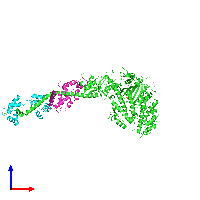 PDB 1kk8 coloured by chain and viewed from the front.
