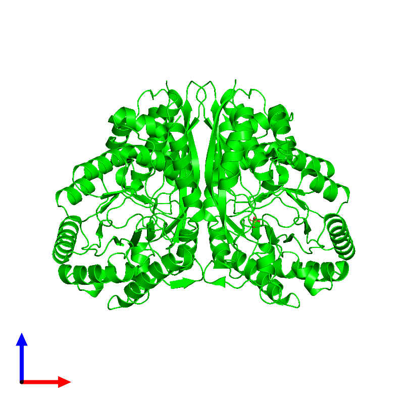 <div class='caption-body'><ul class ='image_legend_ul'> Dimeric assembly 1 of PDB entry 1kko coloured by chemically distinct molecules and viewed from the front. This assembly contains:<li class ='image_legend_li'>2 copies of Methylaspartate ammonia-lyase</li><li class ='image_legend_li'>One copy of SULFATE ION</li></ul></div>