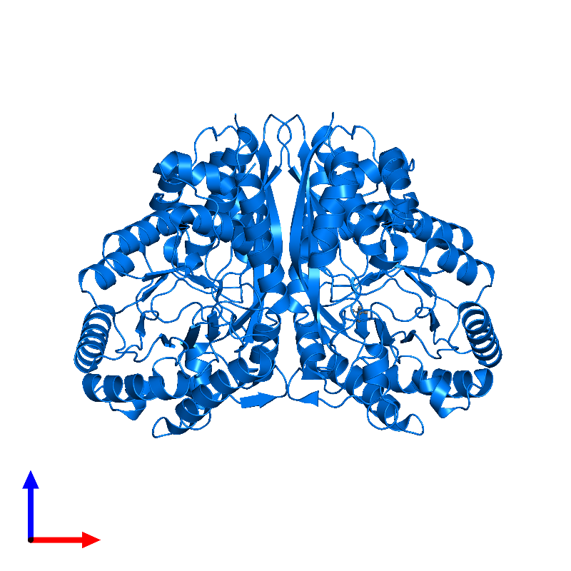 <div class='caption-body'>PDB entry 1kko contains 2 copies of Methylaspartate ammonia-lyase in assembly 1. This protein is highlighted and viewed from the front.</div>