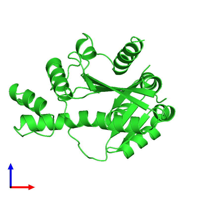 <div class='caption-body'><ul class ='image_legend_ul'>The deposited structure of PDB entry 1kku coloured by chain and viewed from the front. The entry contains: <li class ='image_legend_li'>1 copy of Nicotinamide/nicotinic acid mononucleotide adenylyltransferase 1</li><li class ='image_legend_li'>There are no non-polymeric molecules</li></ul></li></ul></li></div>