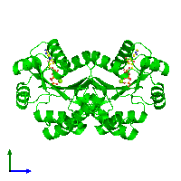 Dimeric assembly 1 of PDB entry 1ko5 coloured by chemically distinct molecules and viewed from the side.