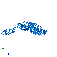 PDB 1ko7 contains 3 copies of HPr kinase/phosphorylase in assembly 1. This protein is highlighted and viewed from the side.