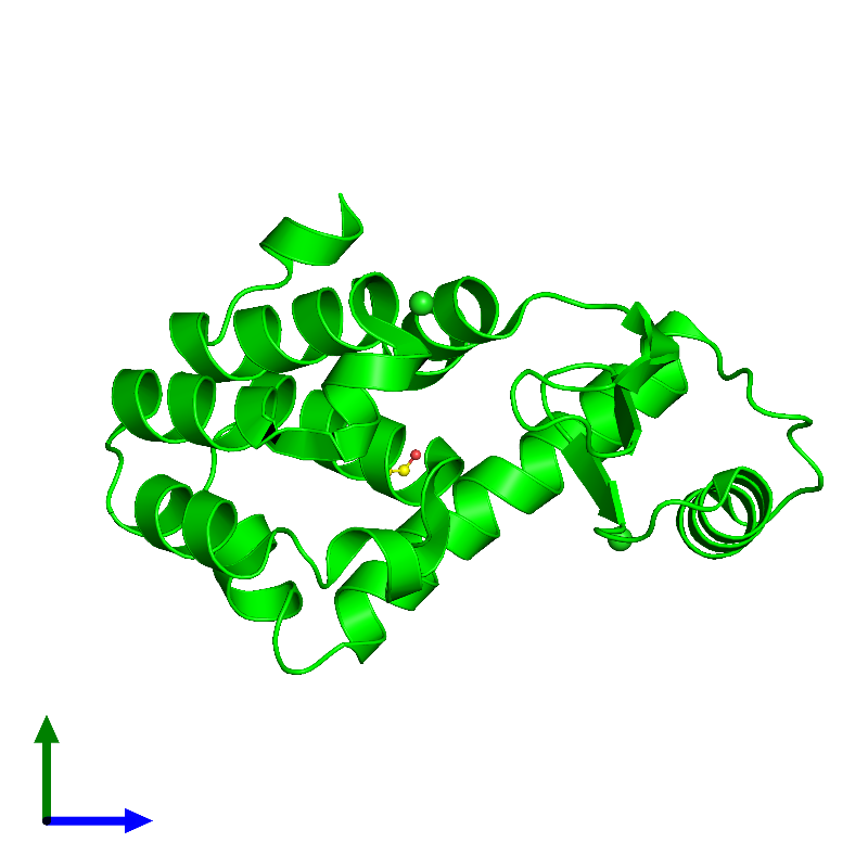 <div class='caption-body'><ul class ='image_legend_ul'> Monomeric assembly 1 of PDB entry 1l0k coloured by chemically distinct molecules and viewed from the side. This assembly contains:<li class ='image_legend_li'>One copy of Endolysin</li><li class ='image_legend_li'>2 copies of CHLORIDE ION</li><li class ='image_legend_li'>One copy of 2-HYDROXYETHYL DISULFIDE</li></ul></div>