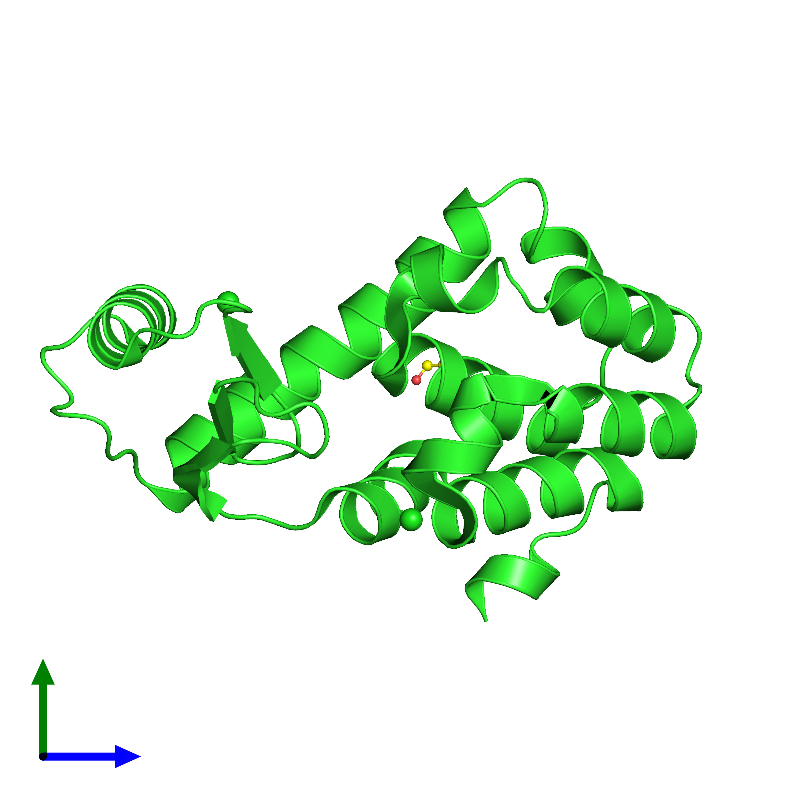 <div class='caption-body'><ul class ='image_legend_ul'>The deposited structure of PDB entry 1l0k coloured by chain and viewed from the side. The entry contains: <li class ='image_legend_li'>1 copy of Endolysin</li><li class ='image_legend_li'>2 non-polymeric entities<ul class ='image_legend_ul'><li class ='image_legend_li'>2 copies of CHLORIDE ION</li><li class ='image_legend_li'>1 copy of 2-HYDROXYETHYL DISULFIDE</li></ul></li></div>