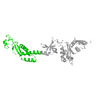 1 copy of CATH domain 3.30.1480.10 (N Utilization Substance Protein A; Chain:P; domain 4) in Transcription termination/antitermination protein NusA in PDB 1l2f.