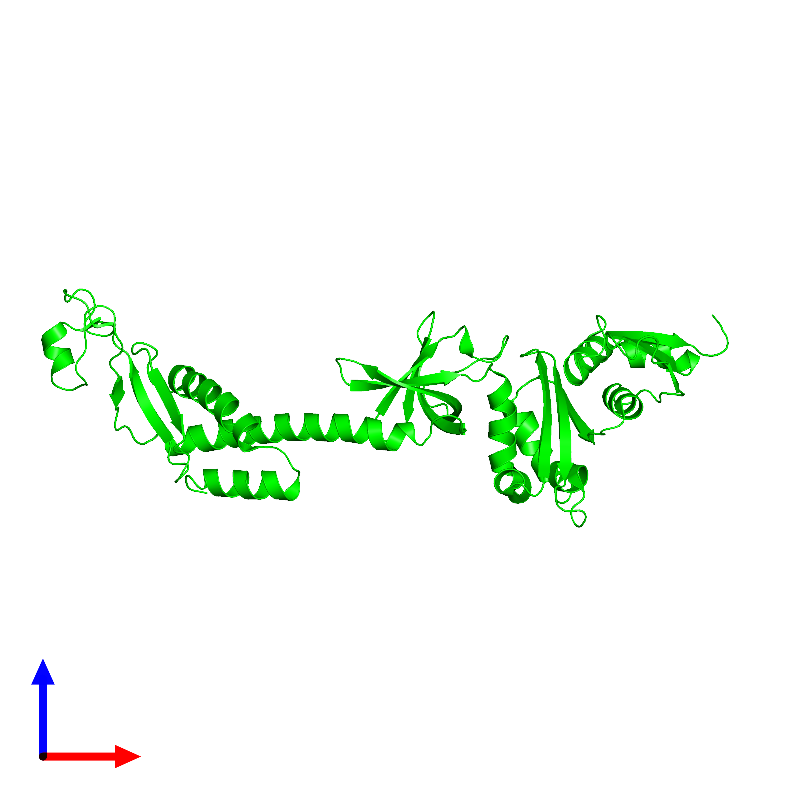 <div class='caption-body'><ul class ='image_legend_ul'> Monomeric assembly 1 of PDB entry 1l2f coloured by chemically distinct molecules and viewed from the front. This assembly contains:<li class ='image_legend_li'>One copy of Transcription termination/antitermination protein NusA</li></ul></div>