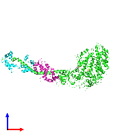 PDB 1l2o coloured by chain and viewed from the front.