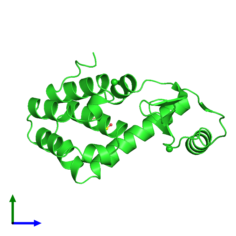 <div class='caption-body'><ul class ='image_legend_ul'>The deposited structure of PDB entry 1l65 coloured by chain and viewed from the side. The entry contains: <li class ='image_legend_li'>1 copy of Endolysin</li><li class ='image_legend_li'>2 non-polymeric entities<ul class ='image_legend_ul'><li class ='image_legend_li'>2 copies of CHLORIDE ION</li><li class ='image_legend_li'>2 copies of BETA-MERCAPTOETHANOL</li></ul></li></div>