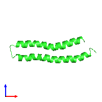 PDB 1l6t coloured by chain and viewed from the front.