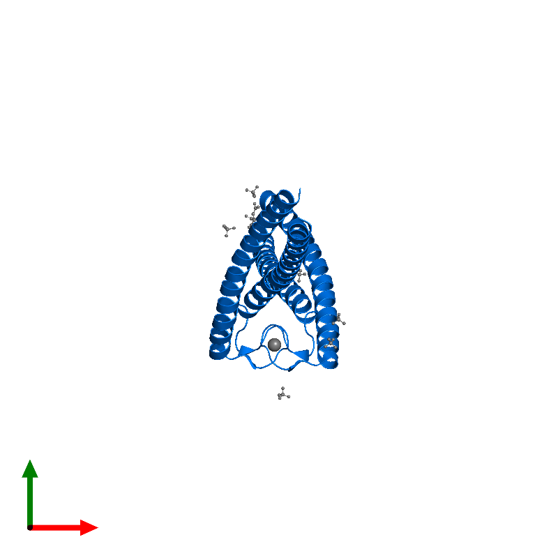 <div class='caption-body'>PDB entry 1l8d contains 2 copies of DNA double-strand break repair rad50 ATPase in assembly 1. This protein is highlighted and viewed from the top.</div>