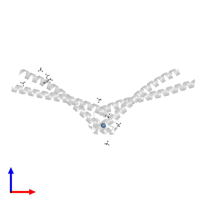 <div class='caption-body'>PDB entry 1l8d contains 1 copy of MERCURY (II) ION in assembly 1. This small molecule is highlighted and viewed from the front.</div>