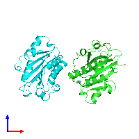 PDB 1lfa coloured by chain and viewed from the front.