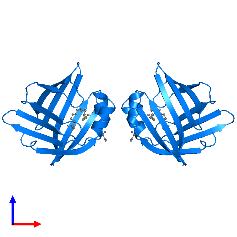 <div class='caption-body'>PDB entry 1lic contains 2 copies of ADIPOCYTE LIPID-BINDING PROTEIN in assembly 1. This protein is highlighted and viewed from the front.</div>