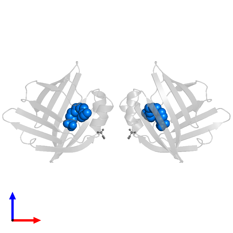 <div class='caption-body'>PDB entry 1lic contains 2 copies of 1-HEXADECANOSULFONIC ACID in assembly 1. This small molecule is highlighted and viewed from the front.</div>