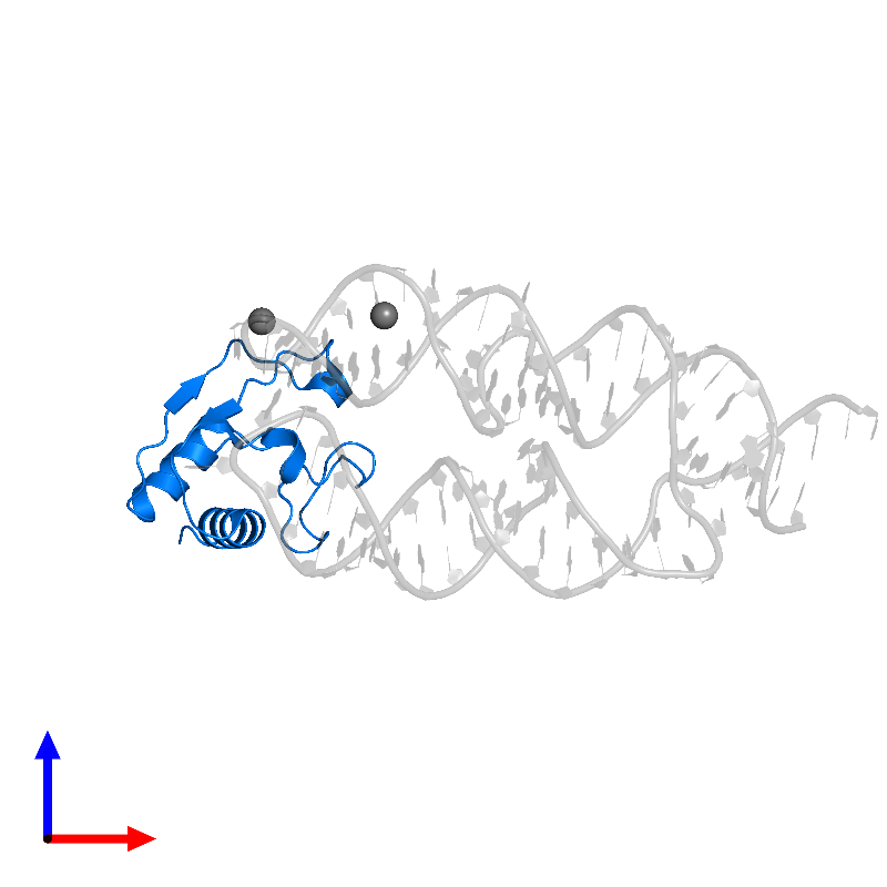 <div class='caption-body'>PDB entry 1lng contains 1 copy of Signal recognition particle 19 kDa protein in assembly 1. This protein is highlighted and viewed from the front.</div>