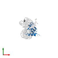 PDB 1lng contains 1 copy of Signal recognition particle 19 kDa protein in assembly 1. This protein is highlighted and viewed from the top.