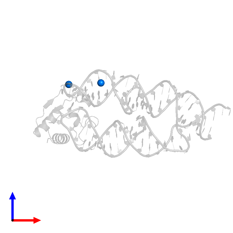 <div class='caption-body'>PDB entry 1lng contains 2 copies of MAGNESIUM ION in assembly 1. This small molecule is highlighted and viewed from the front.</div>