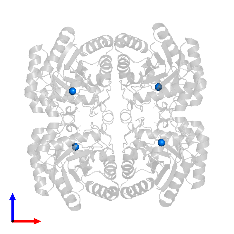 <div class='caption-body'>PDB entry 1lrn contains 4 copies of CADMIUM ION in assembly 1. This small molecule is highlighted and viewed from the front.</div>