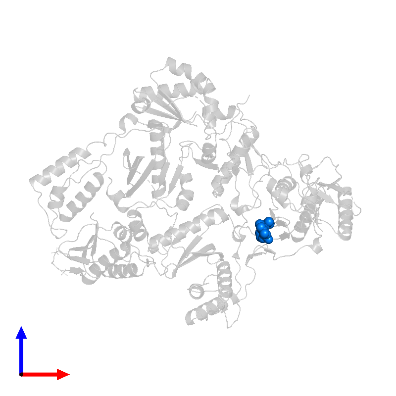 <div class='caption-body'>PDB entry 1lwc contains 1 copy of 11-CYCLOPROPYL-5,11-DIHYDRO-4-METHYL-6H-DIPYRIDO[3,2-B:2',3'-E][1,4]DIAZEPIN-6-ONE in assembly 1. This small molecule is highlighted and viewed from the front.</div>