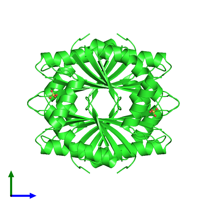 <div class='caption-body'><ul class ='image_legend_ul'> Tetrameric assembly 1 of PDB entry 1lxj coloured by chain and viewed from the side. This assembly contains:<li class ='image_legend_li'>4 copies of HYPOTHETICAL 11.5KDA PROTEIN IN HTB2-NTH2 INTERGENIC REGION</li><li class ='image_legend_li'>4 copies of SULFATE ION</li></ul></div>