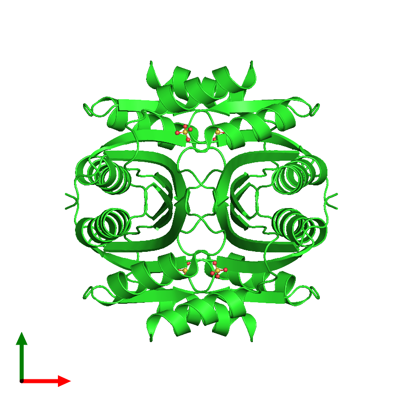 <div class='caption-body'><ul class ='image_legend_ul'> Tetrameric assembly 1 of PDB entry 1lxj coloured by chain and viewed from the top. This assembly contains:<li class ='image_legend_li'>4 copies of HYPOTHETICAL 11.5KDA PROTEIN IN HTB2-NTH2 INTERGENIC REGION</li><li class ='image_legend_li'>4 copies of SULFATE ION</li></ul></div>