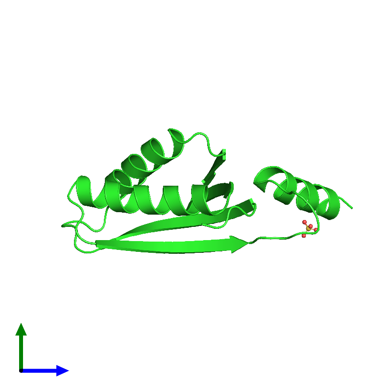 <div class='caption-body'><ul class ='image_legend_ul'>The deposited structure of PDB entry 1lxj coloured by chain and viewed from the side. The entry contains: <li class ='image_legend_li'>1 copy of HYPOTHETICAL 11.5KDA PROTEIN IN HTB2-NTH2 INTERGENIC REGION</li><li class ='image_legend_li'>There is 1 non-polymeric molecule<ul class ='image_legend_ul'><li class ='image_legend_li'>1 copy of SULFATE ION</li></ul></li></div>