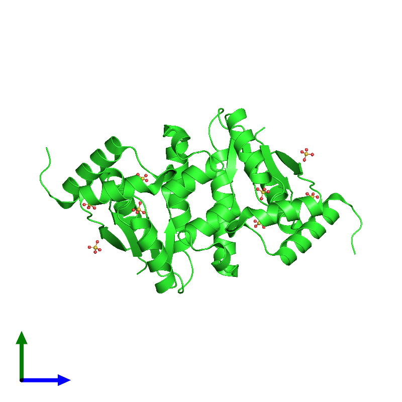 <div class='caption-body'><ul class ='image_legend_ul'> Dimeric assembly 1 of PDB entry 1ly1 coloured by chain and viewed from the side. This assembly contains:<li class ='image_legend_li'>2 copies of polynucleotide kinase</li><li class ='image_legend_li'>8 copies of SULFATE ION</li></ul></div>