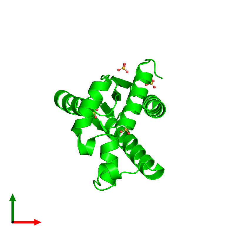 <div class='caption-body'><ul class ='image_legend_ul'>The deposited structure of PDB entry 1ly1 coloured by chemically distinct molecules and viewed from the top. The entry contains: <li class ='image_legend_li'>1 copy of Polynucleotide kinase</li><li class ='image_legend_li'>There is 1 non-polymeric molecule<ul class ='image_legend_ul'><li class ='image_legend_li'>4 copies of SULFATE ION</li></ul></li></div>