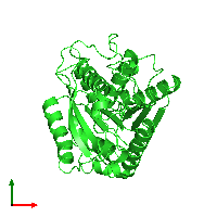 PDB 1lzl coloured by chain and viewed from the top.