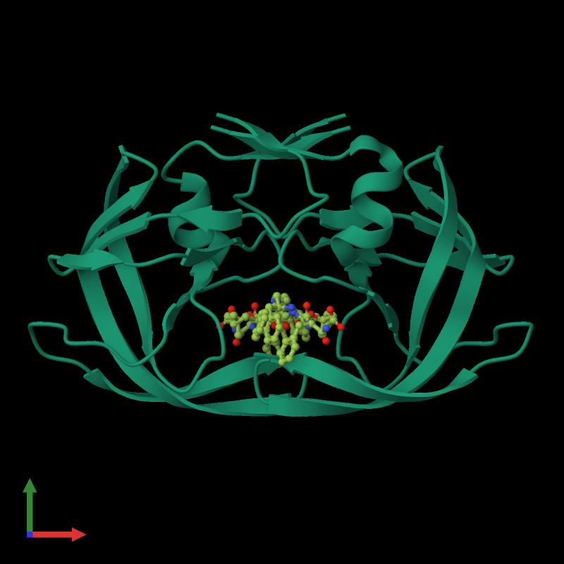 <div class='caption-body'><ul class ='image_legend_ul'> Dimeric assembly 1 of PDB entry 1m0b coloured by chemically distinct molecules and viewed from the front. This assembly contains:<li class ='image_legend_li'>2 copies of Protease</li><li class ='image_legend_li'>One copy of N-{(3S)-3-[(tert-butoxycarbonyl)amino]-4-phenylbutyl}-L-phenylalanyl-L-alpha-glutamyl-L-phenylalaninamide</li><li class ='image_legend_li'>One copy of GLYCEROL</li></ul></div>