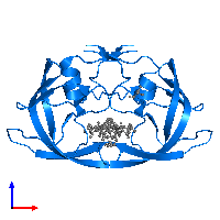 PDB 1m0b contains 2 copies of Protease in assembly 1. This protein is highlighted and viewed from the front.