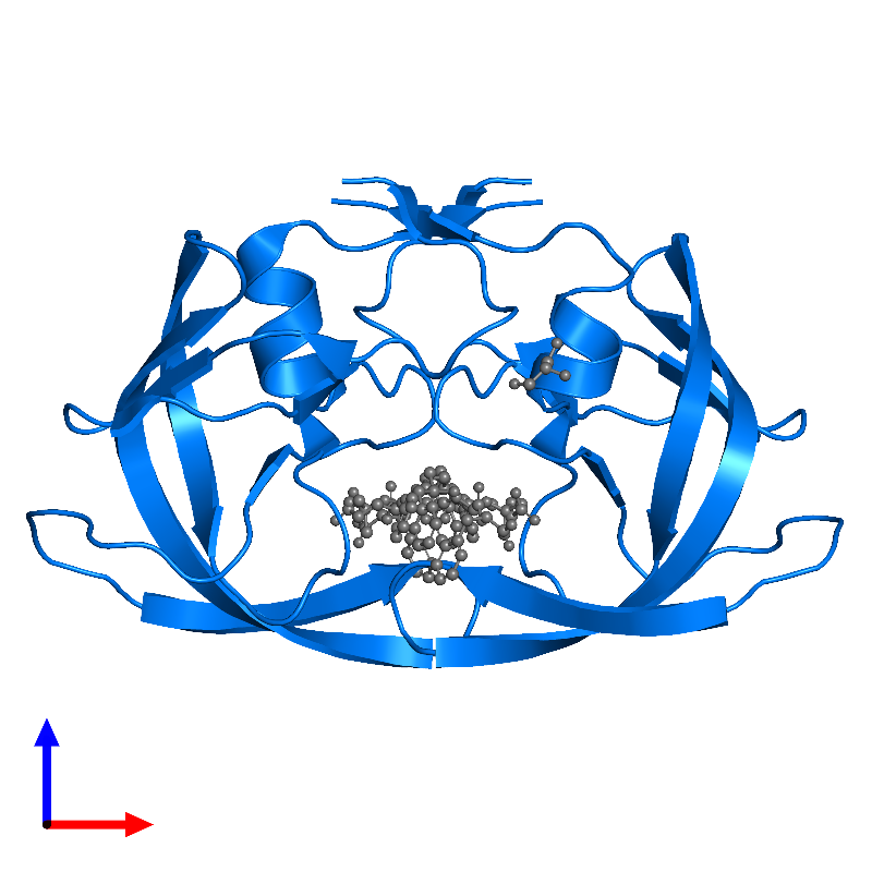 <div class='caption-body'>PDB entry 1m0b contains 2 copies of Protease in assembly 1. This protein is highlighted and viewed from the front.</div>